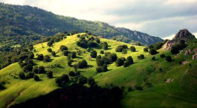 landscape-481728_400